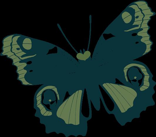 Butterfly left